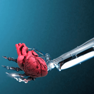 Human-Machine Cardiovascular Disease Management